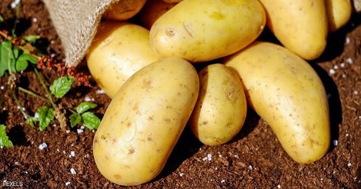 Xóa vết rạn da lâu năm hiệu quả chỉ bằng 1 củ khoai tây mỗi ngày