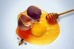 Chữa xuất tinh sớm bằng mật ong kết hợp trứng gà