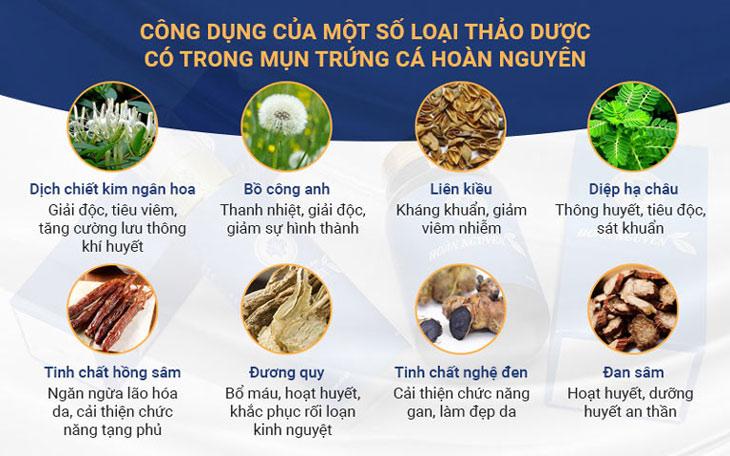 Công dụng của các loại thảo dược có trong BSP Trị Mụn trứng cá Hoàn Nguyên