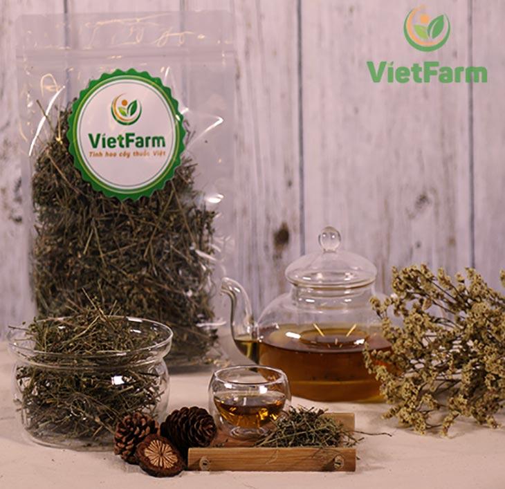 Giảo cổ lam Vietfarm chất lượng cao đạt chuẩn GACP - WHO