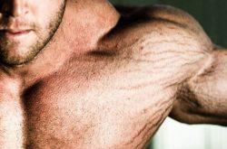 Rạn da khi tập gym thường gặp ở những người tập tạ