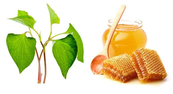 Sự kết hợp của rau diếp và mật ong trị thâm rất tốt