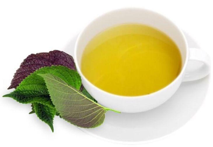 Uống trà tía tô hỗ trợ quá trình điều trị nám từ phía bên trong