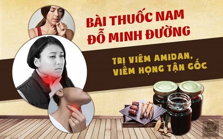 Bài thuốc chữa viêm amidan tại nhà của Đỗ Minh Đường