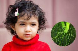 Khi nào cần làm xét nghiệm khuẩn HP cho bé?