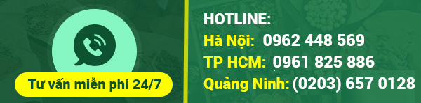 Hotline da day