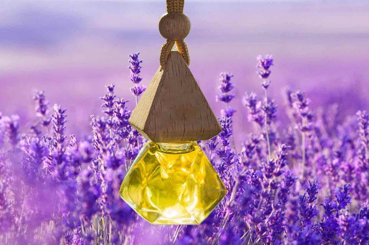Oải hương với mật ong có hiệu quả tốt trong việc làm mờ tàn nhang, nám
