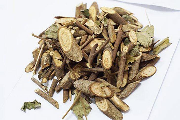 Bài thuốc kết hợp dược liệu với dây thìa canh chữa đái tháo đường