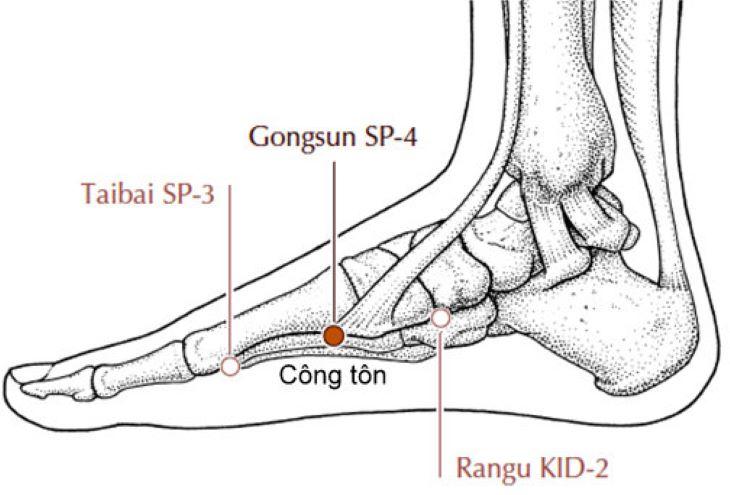 Vị trí huyệt Công tôn trên bàn chân