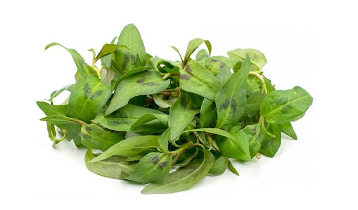Trị hắc lào ở háng bằng rau răm là cách làm rất đơn giản, tiết kiệm