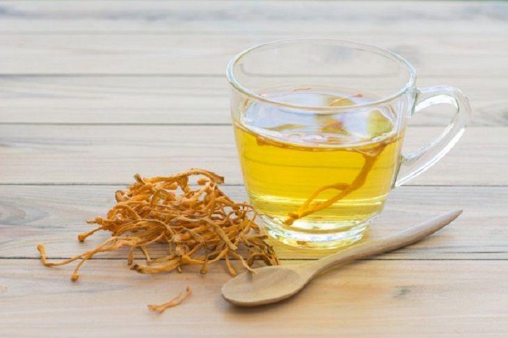 Cha mẹ có thể dùng Đông trùng hạ thảo pha trà cho con uống