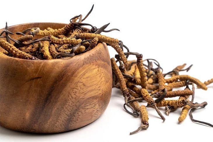 Đông trùng hạ thảo có thể kết hợp với nhiều nguyên liệu khác nhau để tăng cường hiệu quả