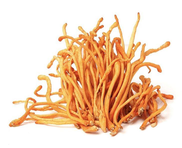 Có rất nhiều cách sử dụng đông trùng hạ thảo khô