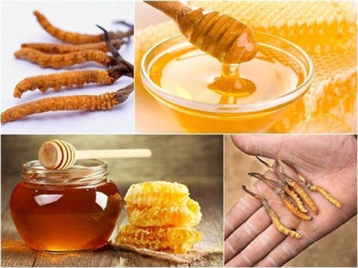 Đông trùng hạ thảo ngâm mật ong giúp tăng cường sức khỏe