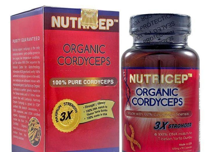 Đông trùng hạ thảo Nutricep có nhiều lợi ích với sức khỏe