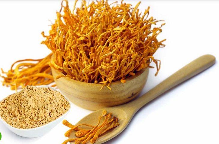 Đông trùng hạ thảo dạng bột có nhiều lợi ích với sức khỏe