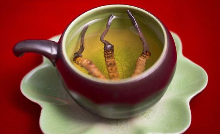 Trà đông trùng hạ thảo là thức uống bổ dưỡng có lợi cho sức khỏe