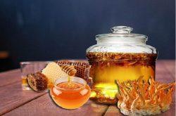 Đông trùng hạ thảo ngâm mật ong rất tốt cho sức khỏe