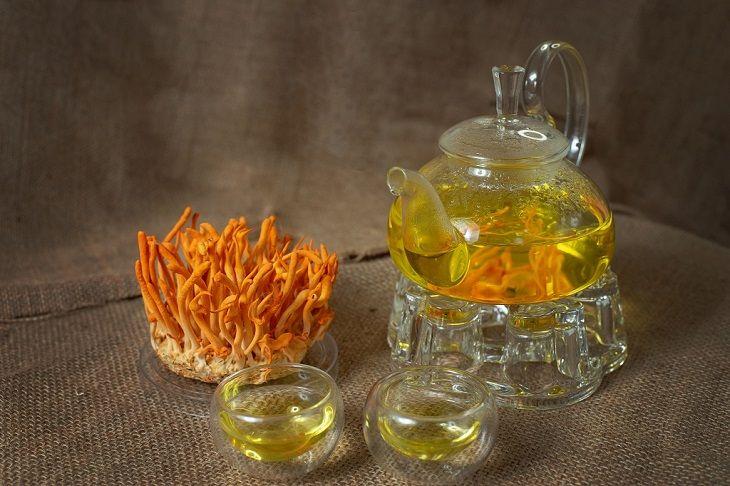 Trà đông trùng hạ thảo là thức uống thơm ngon bổ dưỡng