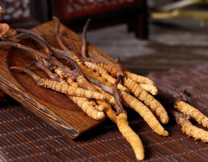 Đông trùng hạ thảo nguyên con khô được nhiều người tin tưởng sử dụng