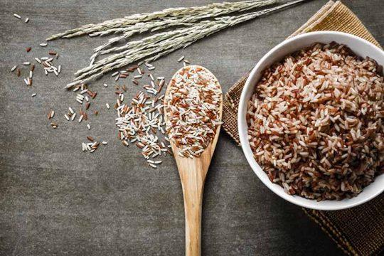 gạo lứt chữa bệnh thoái hóa khớp