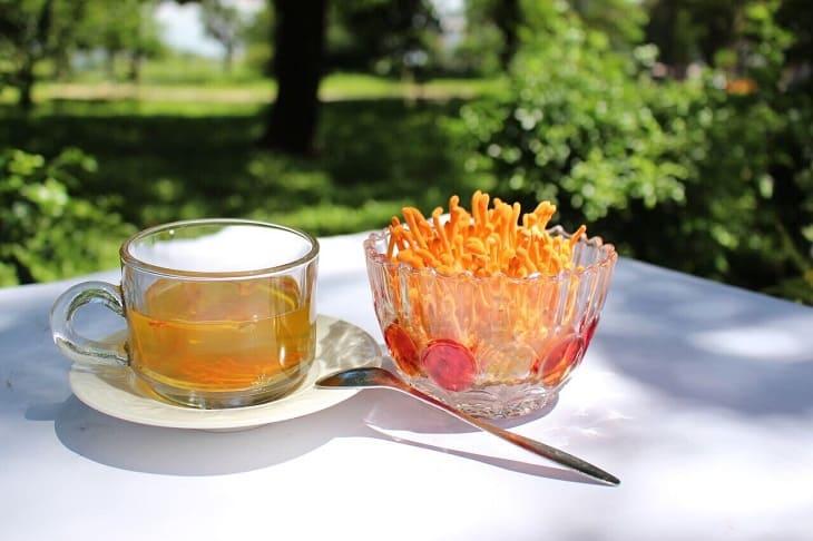 Pha trà Đông trùng hạ thảo