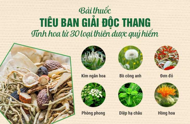 Bài thuốc hòa quyện 100% thảo dược sạch 10 vị bổ 10