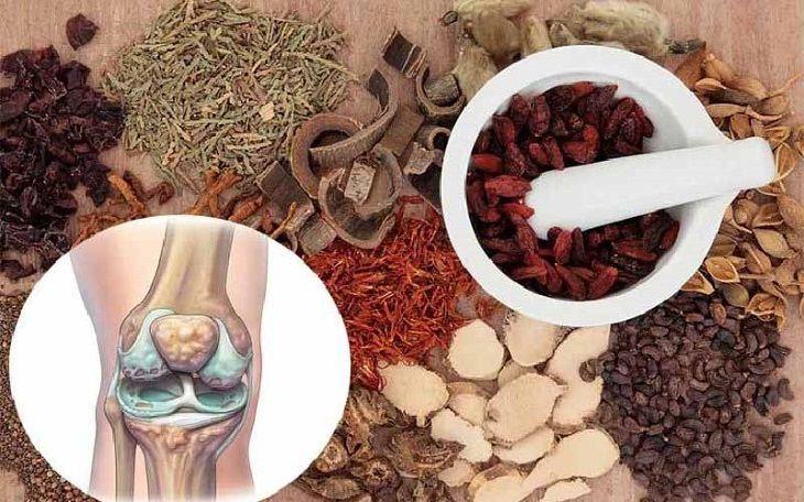 Một số vị thuốc Đông y dùng trong điều trị xương khớp