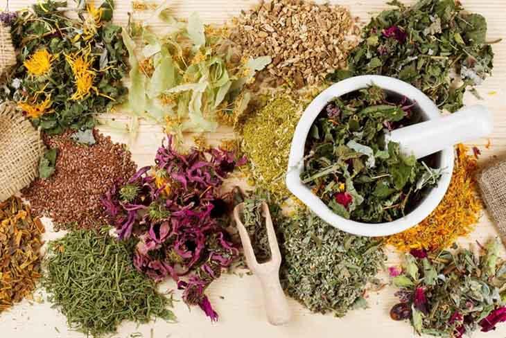 Đông y kết hợp nhiều dược liệu khác nhau để chữa bệnh