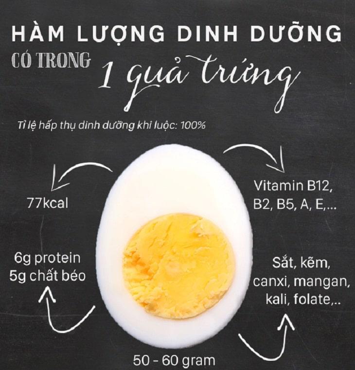 Ăn bao nhiêu trứng 1 ngày là đủ?
