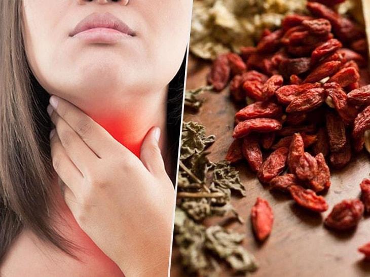 Các bài thuốc Đông Y trị viêm amidan ở người lớn