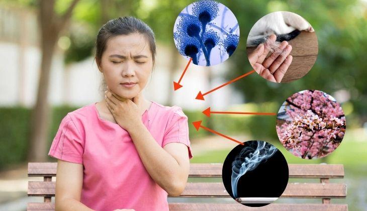 Các nguyên nhân làm người bệnh mắc viêm họng thể dị ứng