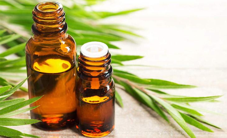 Điều trị mụn nội tiết nam bằng dầu tràm trà