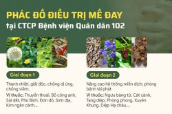 phac do chua me day quan dan 102